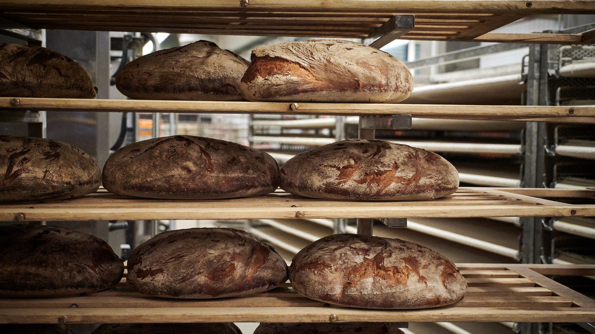 Fertig gebackenen Brot in der Maurer Backstube